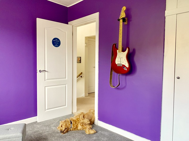 View towards open door, guitar on wall to right of frame, and dog asleep in the doorway.