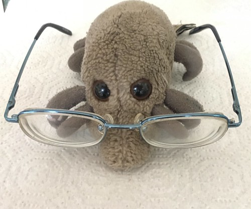 Dust Mite glasses