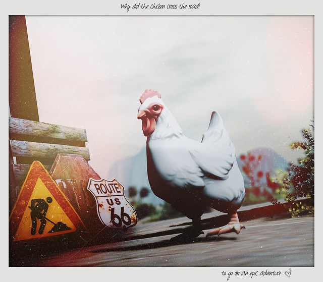 [ Why did the chicken cross the road? ]