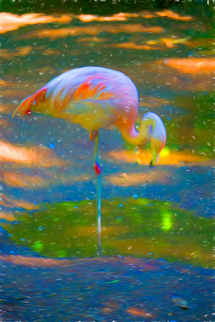 Atomic Flamingo