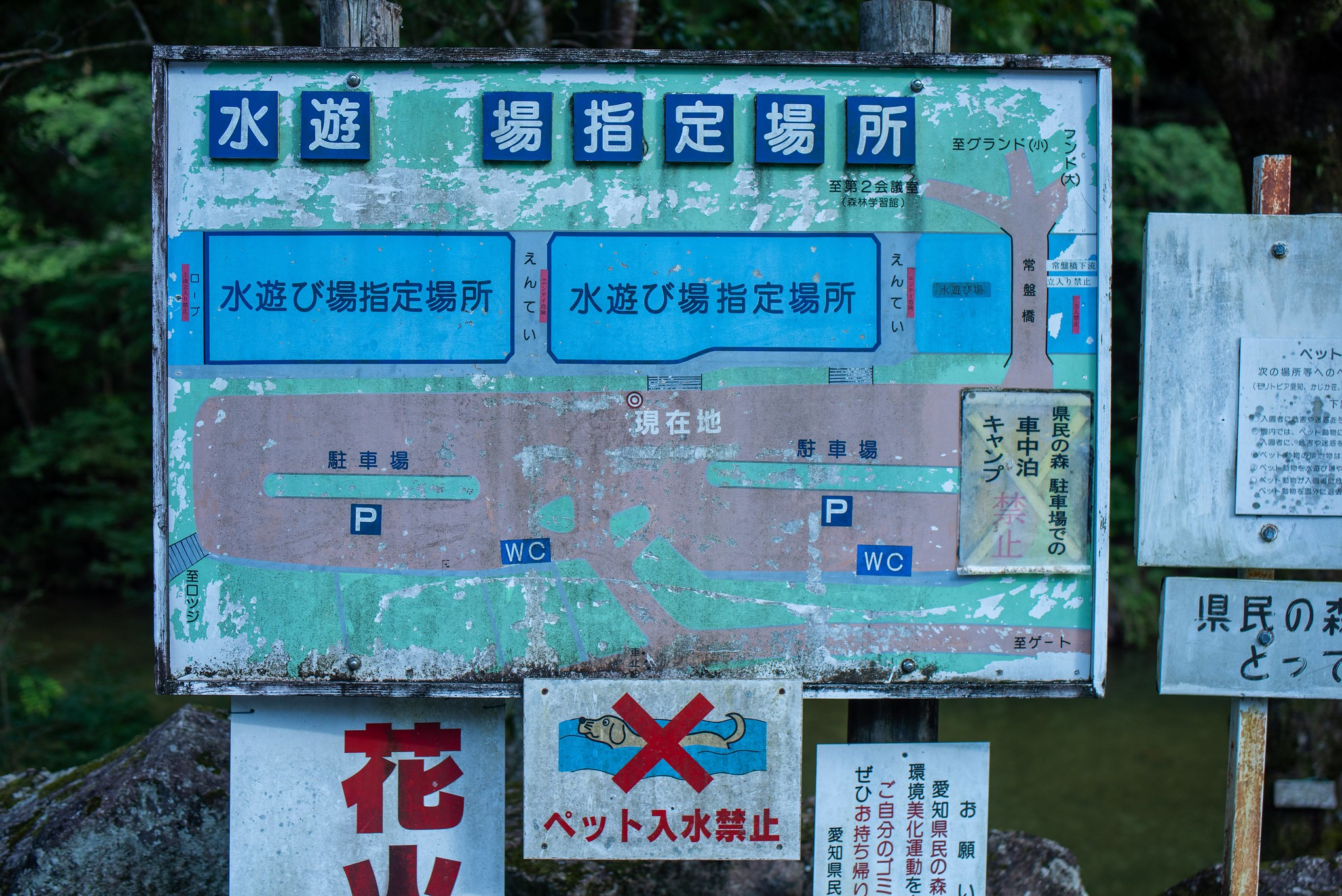 AichiKenminnoMori D810+Tamron45mm