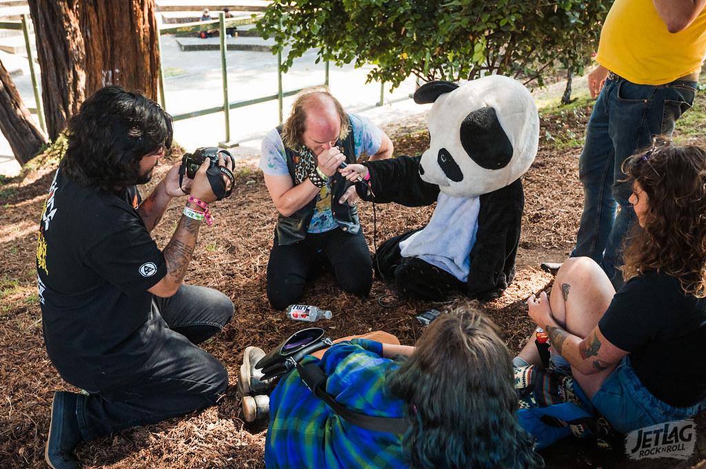 panda-timmy