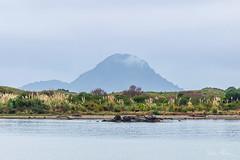 White Island across the river
