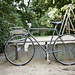Vintage Racing Fixie Bike