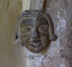 grinning headstop