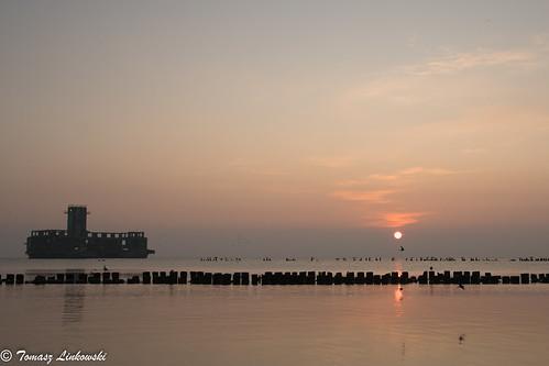 ngc sunrise baltic gulf gdansk cormorants birds sea landscape nikon d500 poland polska babie doły gdynia bird nature wings sun red
