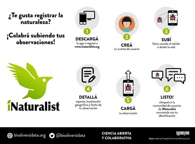 iNaturalist en 6 pasos