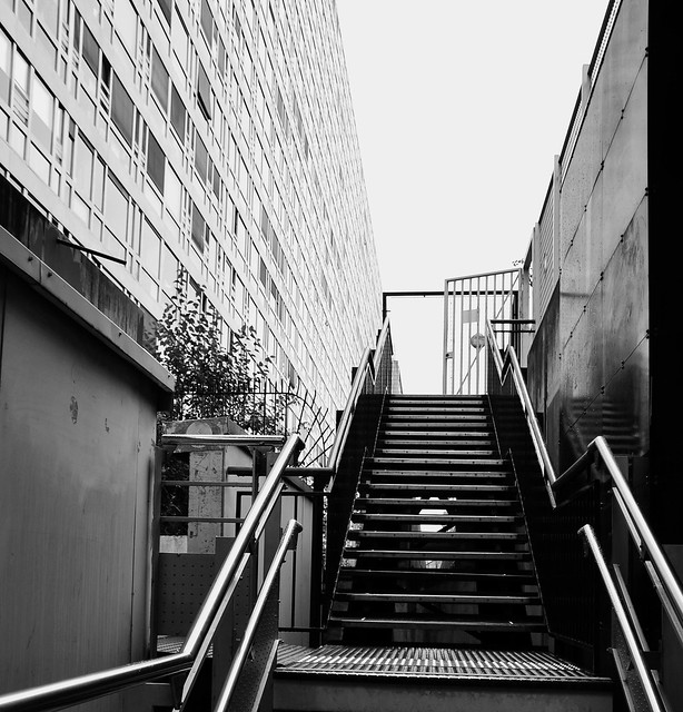 L'escalier  -  The stairway