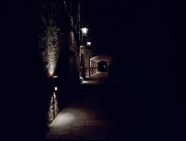Night Walk (MF Pro400H)