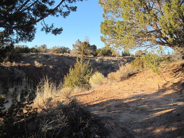 Apache County, Arizona