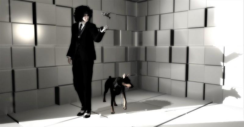#10 - black & white