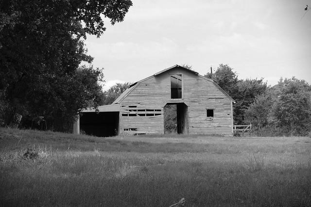 Old Horse Barn BW