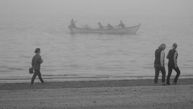Rowing in the Haar 02