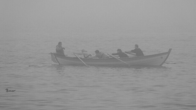 Rowing in the Haar 01