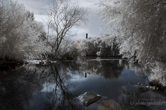 Neckar River - Infrared
