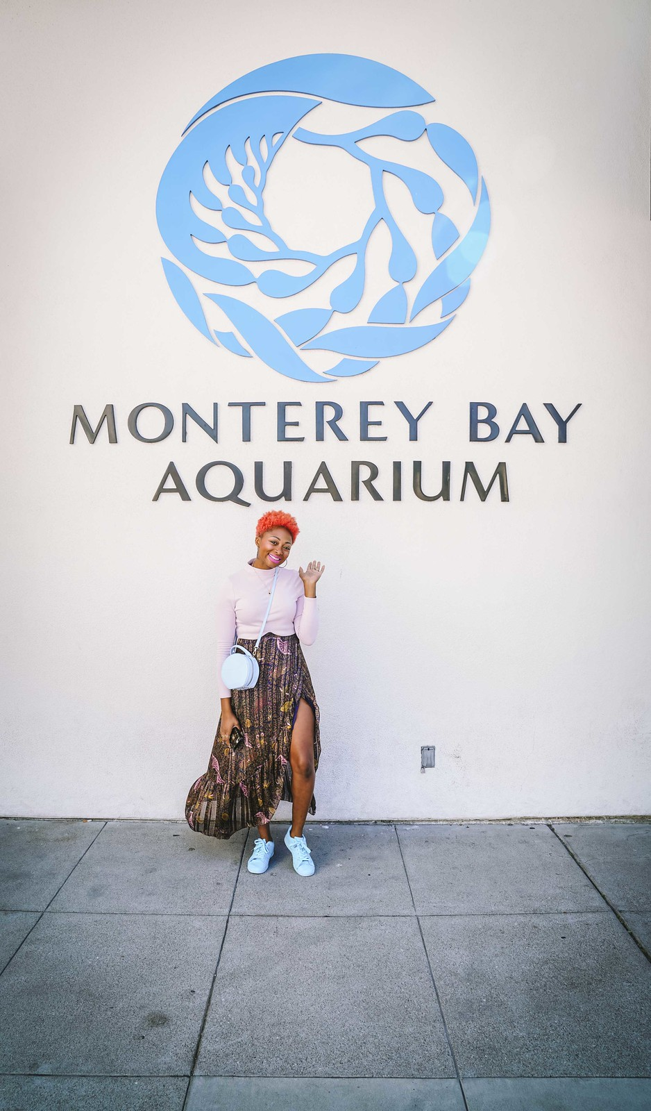 monterey bay aquarium review with pictures