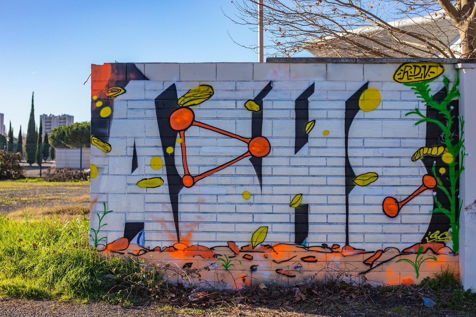 toulouse streetart