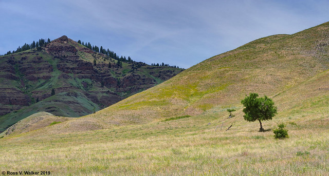 Downslope to Hells Canyon