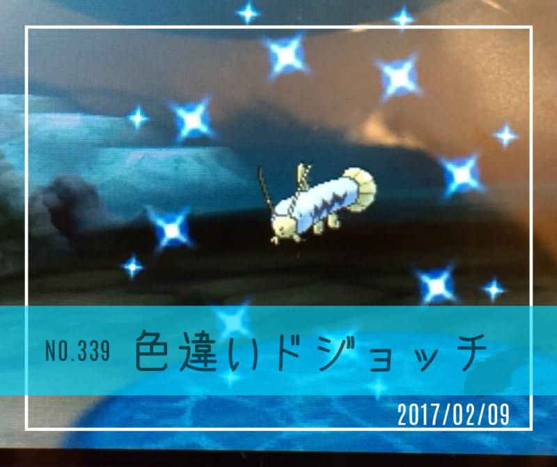 ic339(色違いドジョッチ)