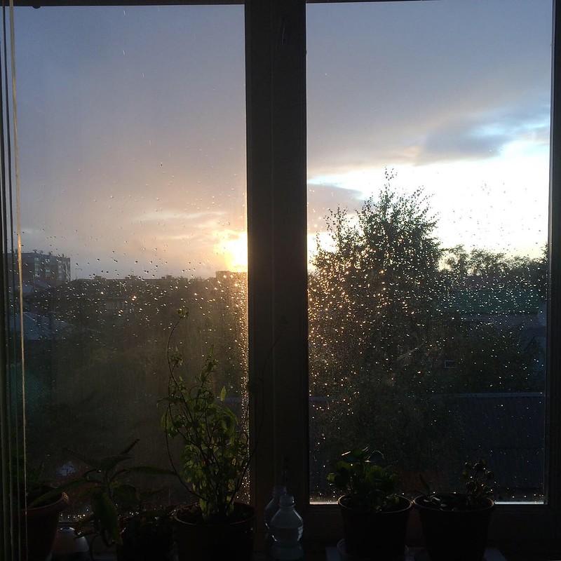 Окно в август