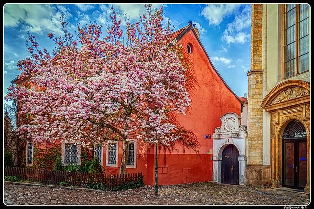 Praha_Prague_Strahovský klášter_Strahov monastery