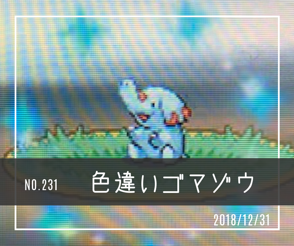 ic231(色違いゴマゾウ)