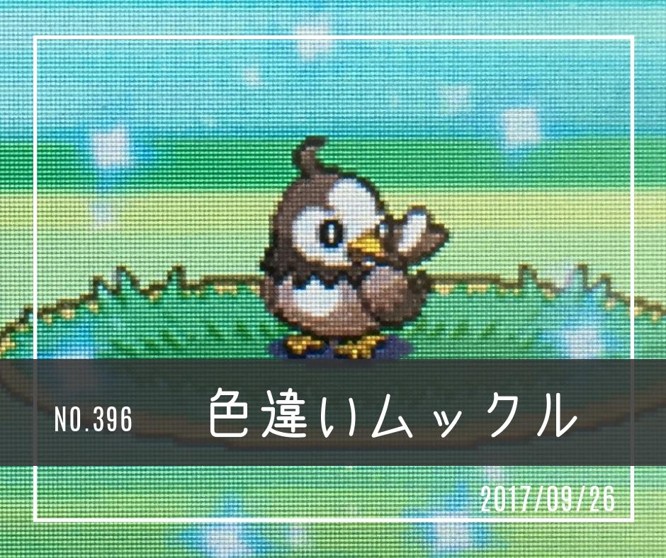 ic396(色違いムックル)