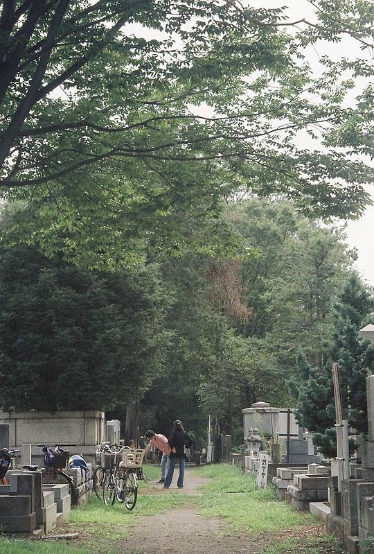 Rolleiflex2 8F+Rolleikin+Kodak Color Plus200雑司が谷霊園