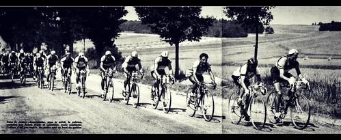 1950 TDF Not too fast, gentlemen!