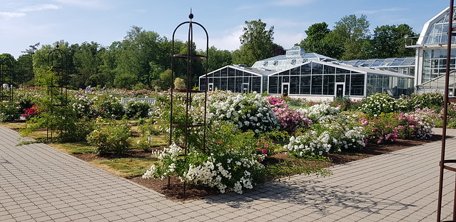 Kaunas Botanical Garden | The Rosarium