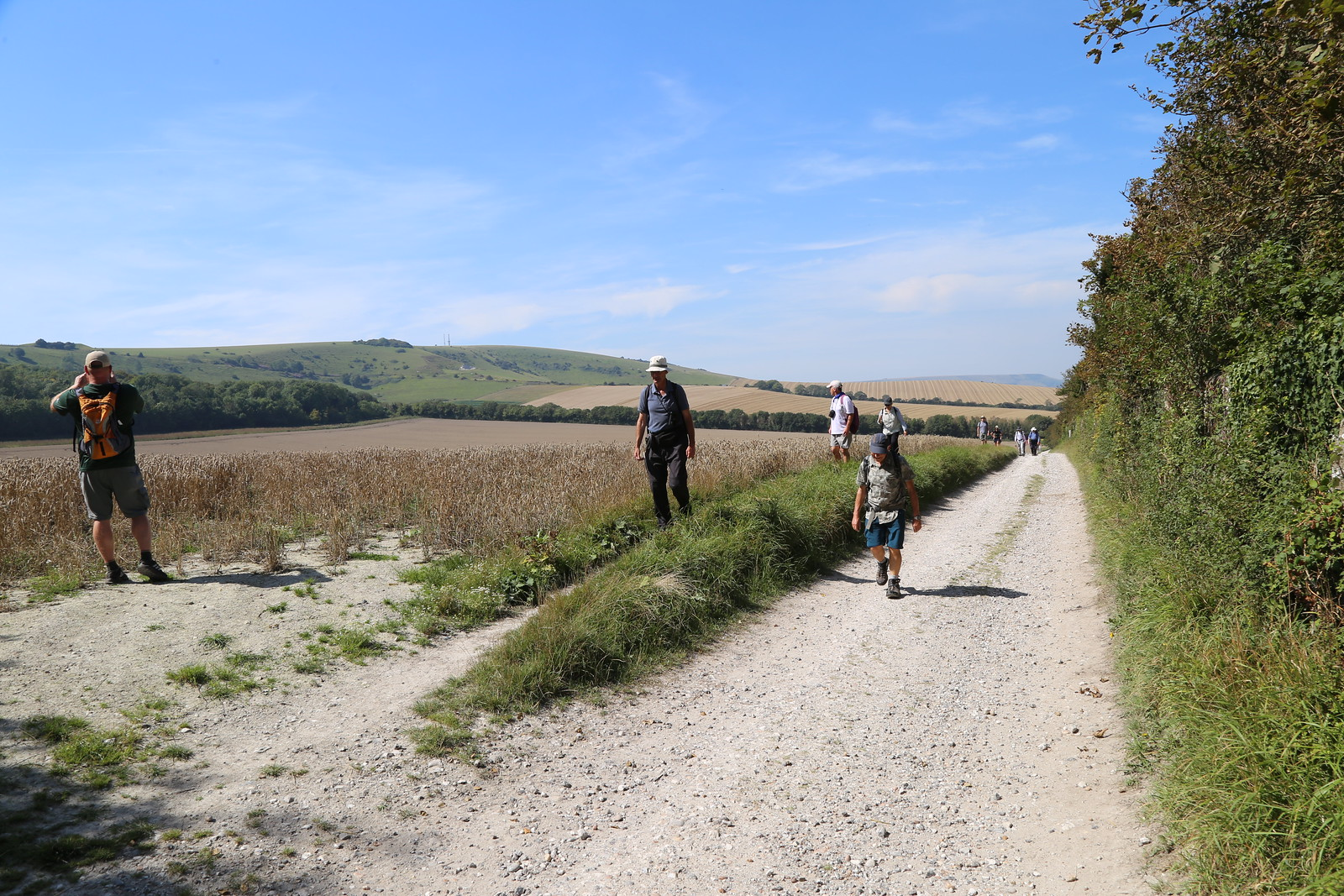 Walking on a chalky road - Firle