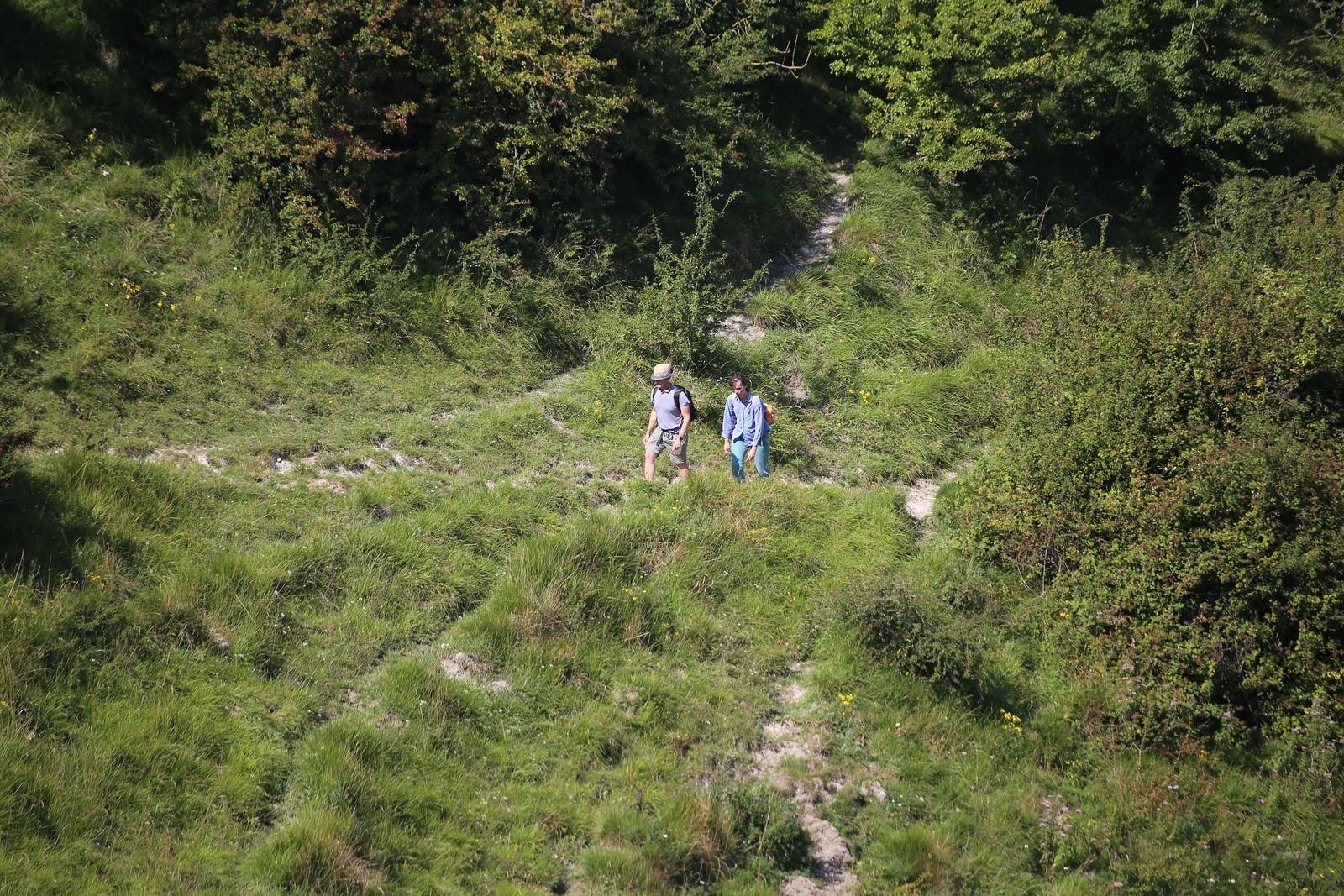 Climbing up - near Firle