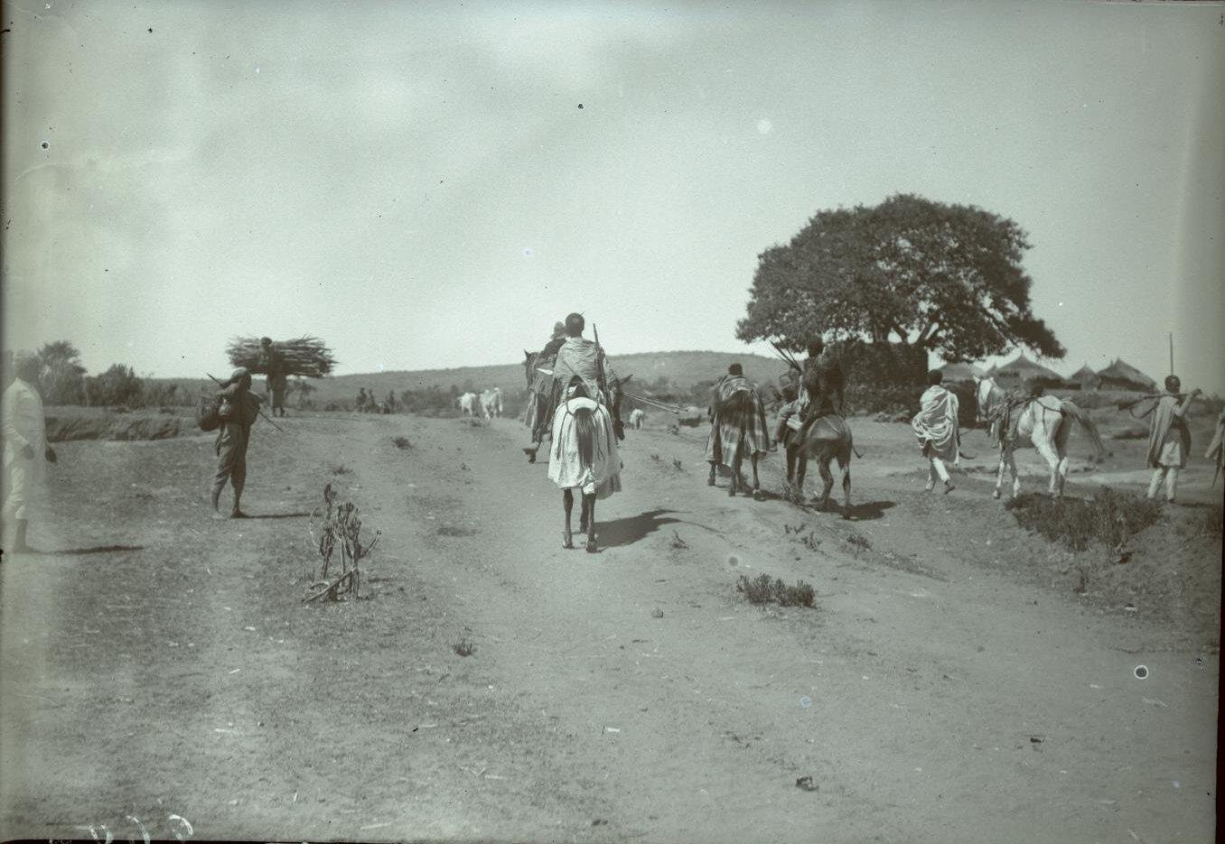 260. Абиссиния, провинция Харар, г. Харар. Эфиопский воин.