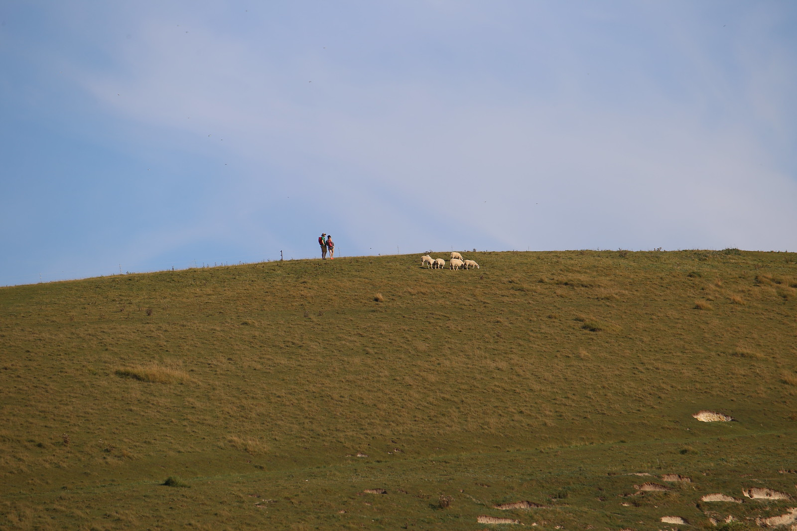 Hill by Cuckmere Haven