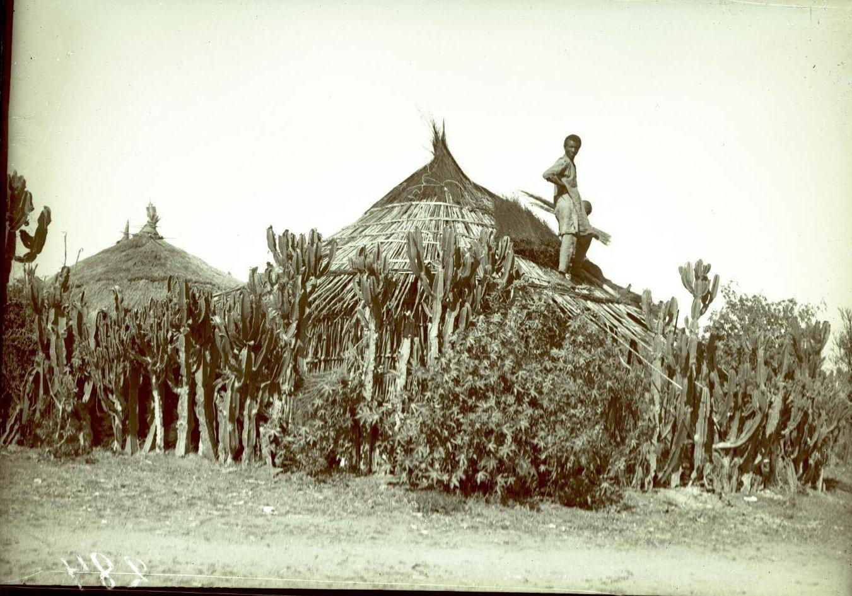 284. Абиссиния, провинция Харар, г. Харар. Постройка дома