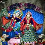 ISKCON Pune NVCC Deity Darshan 01 Sep 2019
