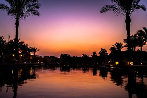 egypt marriott menahouse hotel pool sunset sunrise palm palmtree tree reflection purple orange sun shadow silhouette lights light water swim trees marriottmenahouse giza cairo canon 5d ebalch