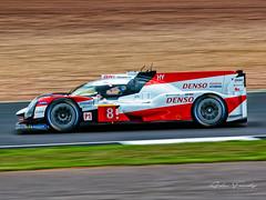(8) Toyota Gazoo Racing - Toyota TS050 Hybrid - LMP1