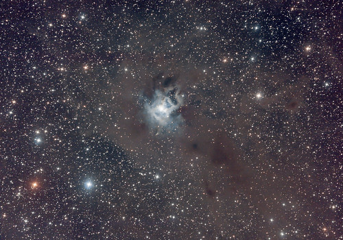 Nébuleuse Iris - NGC 7023