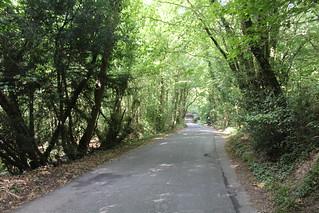 Clarion ride 1.9.19 - Ketche's Lane