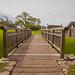 "<p><a href=""https://www.flickr.com/people/baker_1000/"">Baker_1000</a> posted a photo:</p>  <p><a href=""https://www.flickr.com/photos/baker_1000/48660540168/"" title=""Bridge to the Castle""><img src=""https://live.staticflickr.com/65535/48660540168_913032454d_m.jpg"" width=""240"" height=""159"" alt=""Bridge to the Castle"" /></a></p>  <p>Ogmore Castle, Wales</p>"