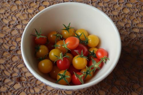 Kleine bunte Tomaten (aus dem Garten von Nachbarn)