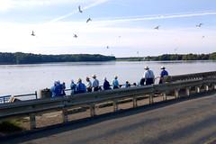 Amish convention @ Pymatuning Reservoir spillway