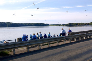 Amish convention @ Pymatuning Reservoir spillway