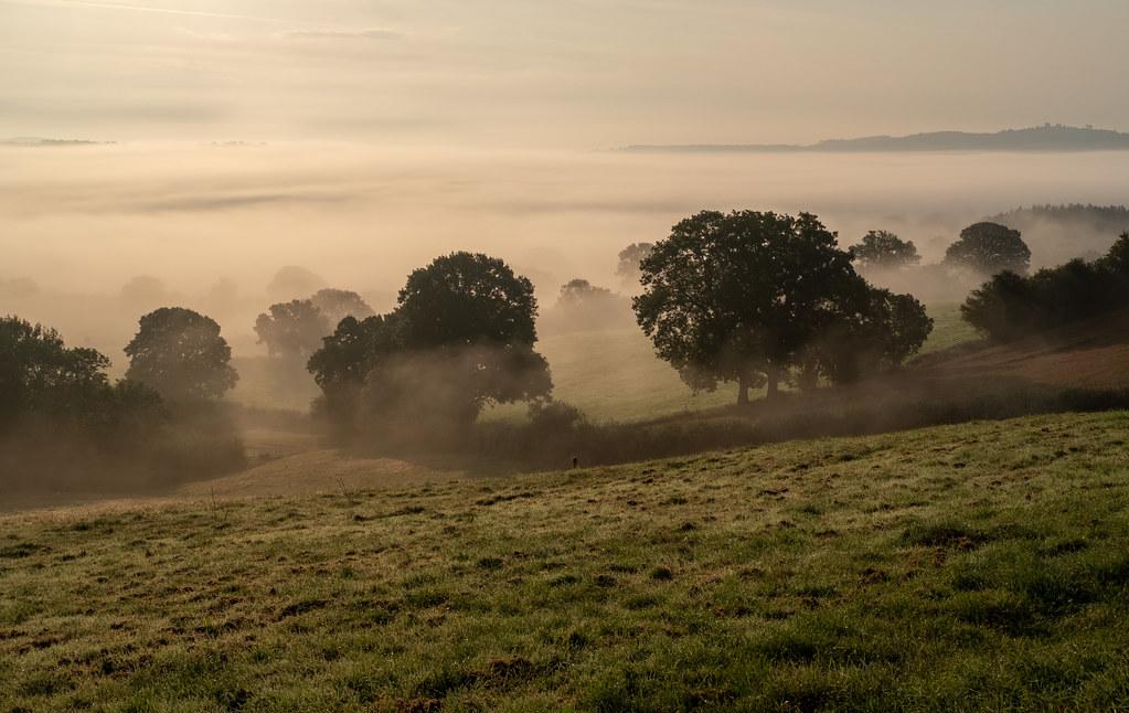 Photo of mist in  Grey Valley