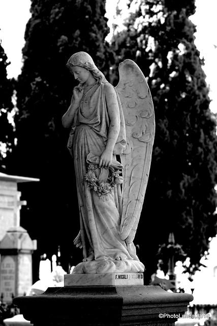 Panteón Famila Góngora Carpio