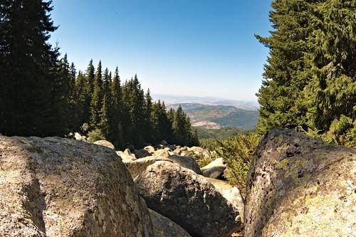 bulgaria vitosha nature landscapes
