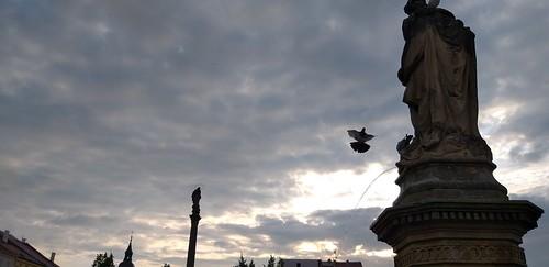 Fountain Flight
