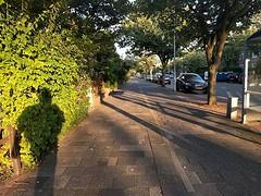 Almost home #ShadowSelfie #WhileWalking