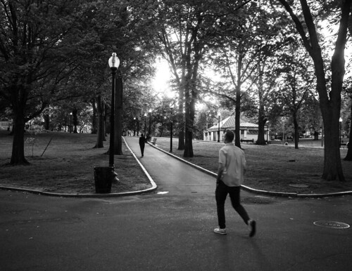boston ma bw blackandwhite monochrome monochromatic sunlight sunset bostoncommon monumenthill frogpond beaconhill shadows olympuspenf penf